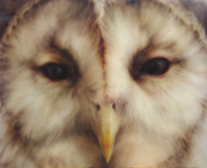 「owl no,1 」 2273×1818 oil on canvas 2010